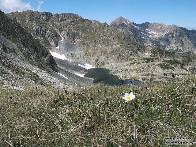 Retezat Trail Race - Taurile Custurii