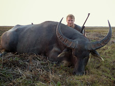 Young Mr Schreurs took this nice bull on the Carmor plains late afternoon in October. The later part of the year October-December is a great time of year for hunting as water is becoming scarce and buffalo are concentrated around the waterholes.
