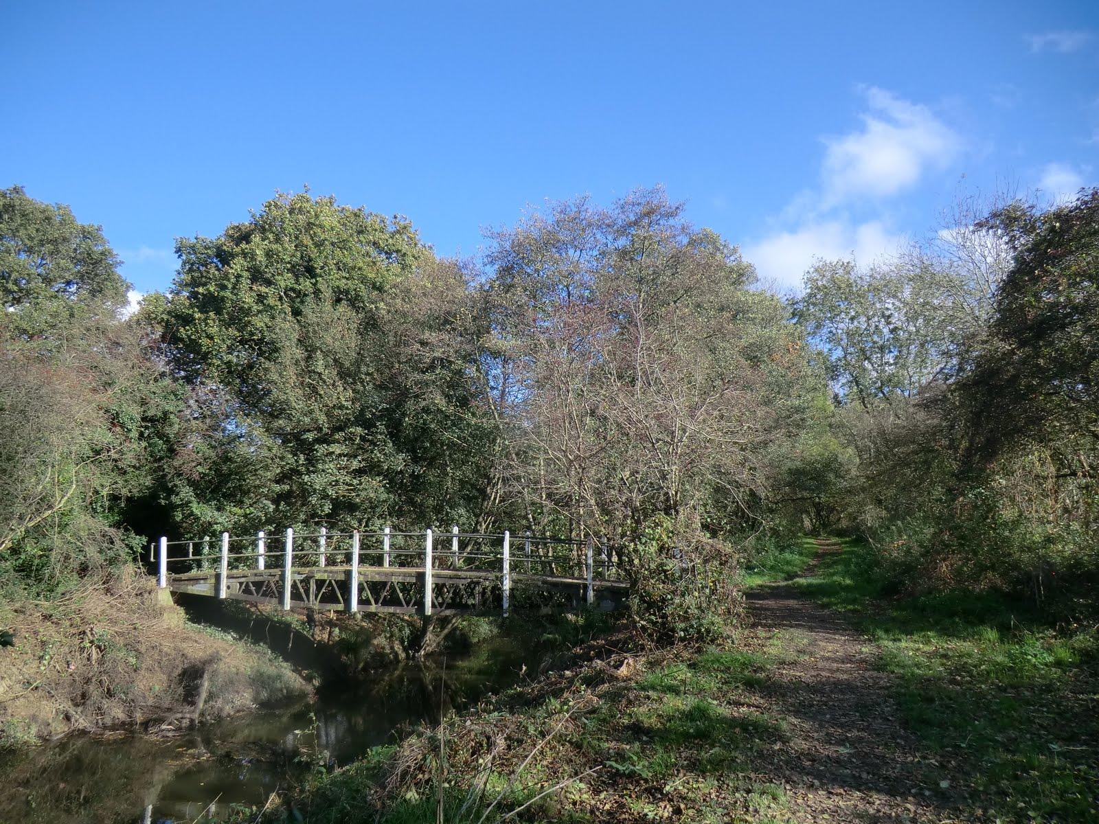 CIMG5387 Straight Mile Bridge, Haysden Country Park