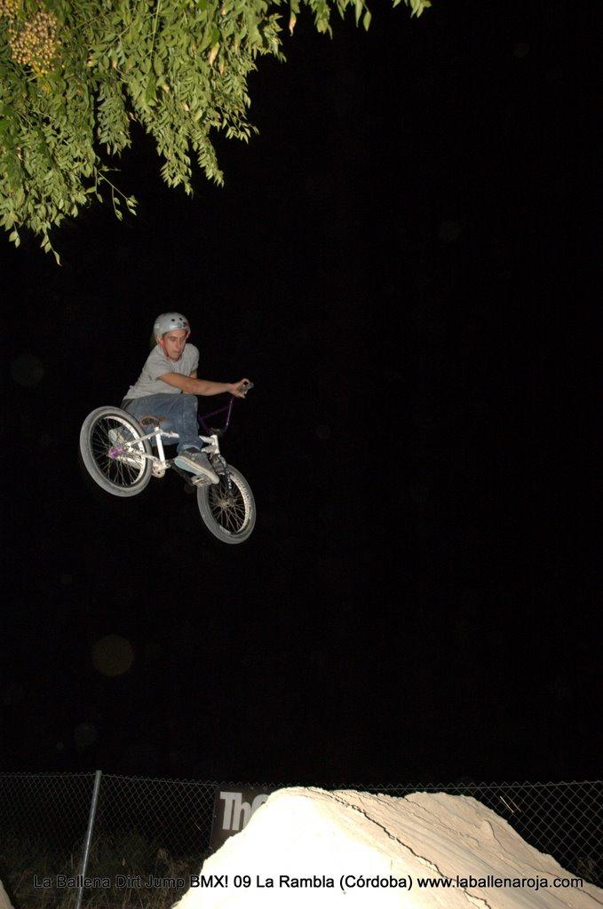 Ballena Dirt Jump BMX 2009 - BMX_09_0178.jpg