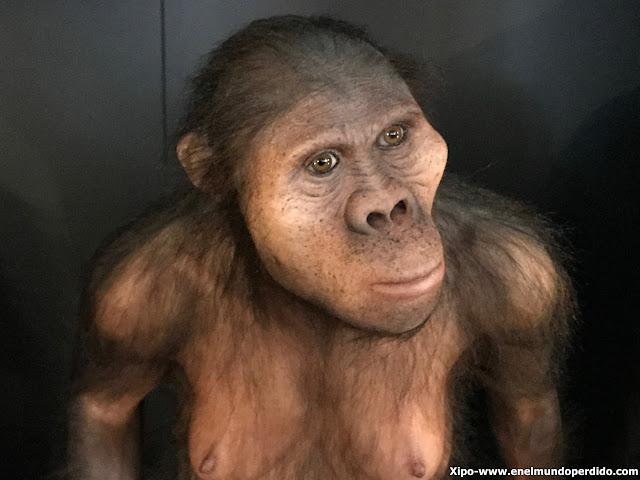 museo-evolucion-burgos-fin-de-semana-cidiano-burgos.JPG