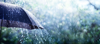 like-the-touch-of-rain-