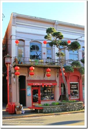 160410_Victoria_Chinatown_0010