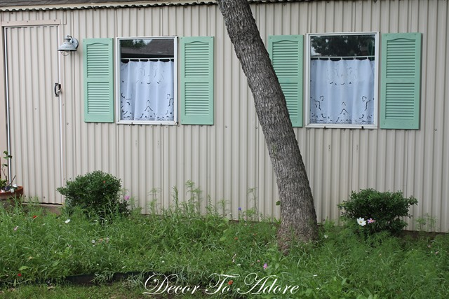 Garden Shed 079