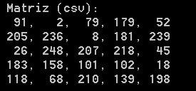 imprimir matriz opencv con formato