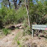 The Carroll Creek Track (131314)