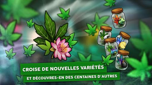 Hempire - Jeu de culture de plante  captures d'écran 2