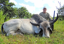 Mr Sedelbauer with his Scrub Bull, taken at 15 yards with a 470 NE double rifle.