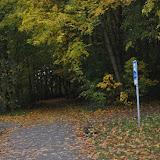Hundesymposium am Müggelsee: 24.-25. Oktober 2015 - DSC_0359.JPG