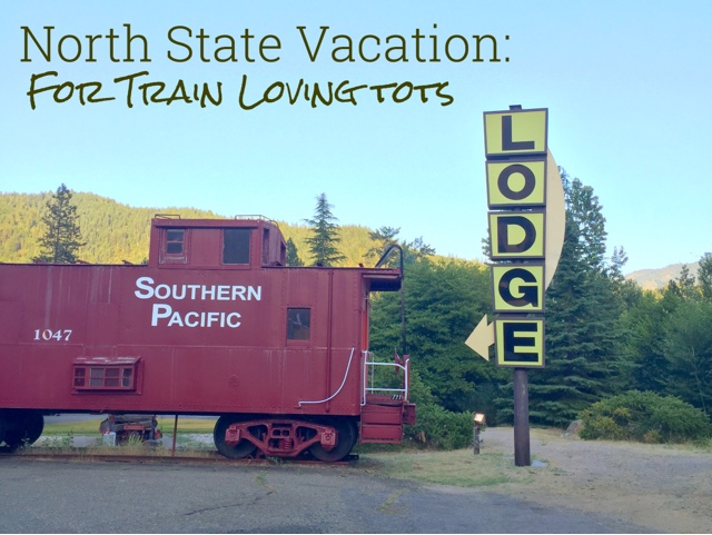 North State Trip for Train Loving Tots