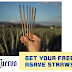 Free Box of Jose Cuervo 100% Biodegradable Straws Made From Agave
