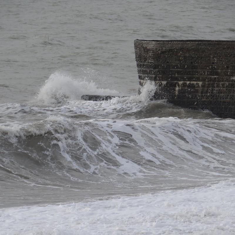 Brighton_146.JPG