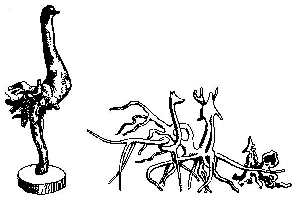 Корни и наросты на деревьях