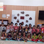 Brown Day Celebration by Nursery Morning Section at Witty World, Chikoowadi (2018-19)