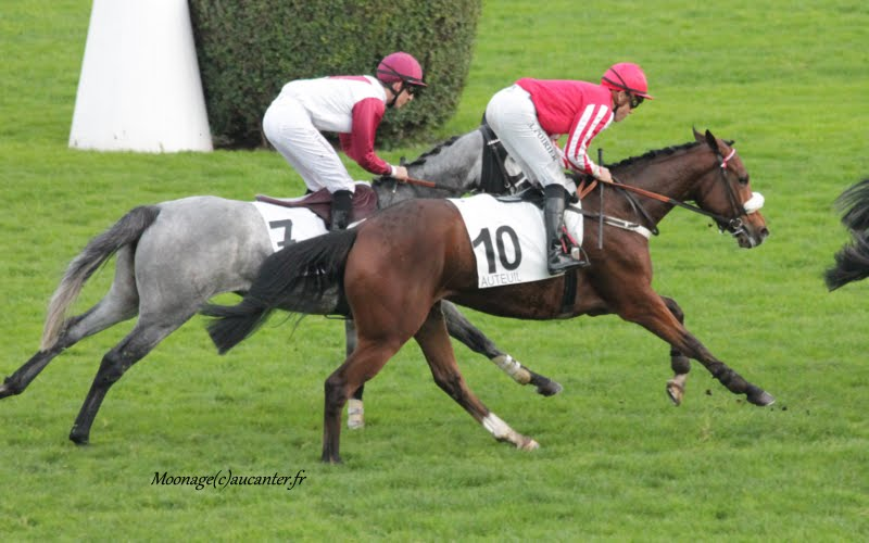 Photos Auteuil 7-11-2015 (48h de l'obstacle) IMG_6664