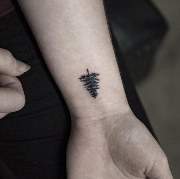 Esta linda conifer
