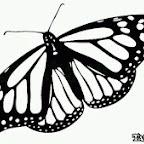 Photo - tattoo designs