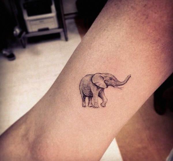o_pequeno_elefante_da_tatuagem