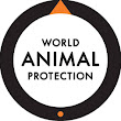 World Animal Protection US - Videos - Google+