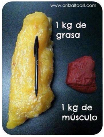 Aritz Altadill: Grasa vs Músculo