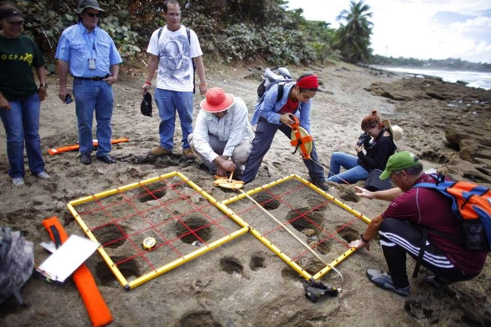 Actividad de voluntariado donde ayudan en un estudio de campo arqueológico en la reserva de la Hacienda la Esperanza.