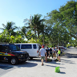 unloading the truck in Key Largo, Florida, United States