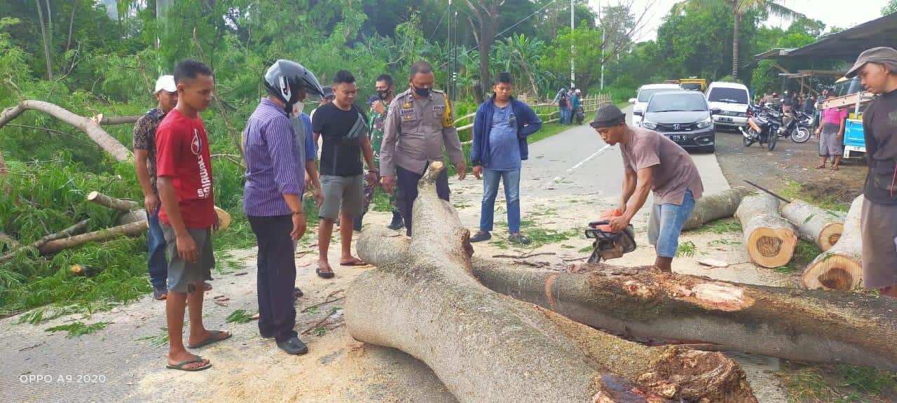 Bhabinkamtibmas Polsek Liliriaja bersama Babinsa dan Warga Singkirkan Pohon Tumbang