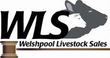 Welshpool Livestock Market