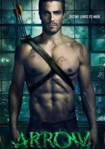 Mũi Tên Xanh 1 - Arrow Season 1 poster