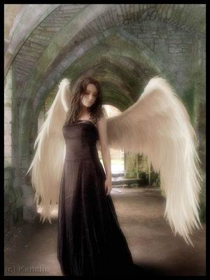 Heaven Of Mysterious Angel, Angels 5