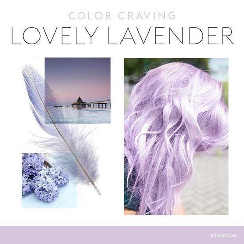 Keune_Color_Craving_lovelylavender