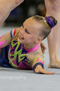Han Balk Fantastic Gymnastics 2015-8736.jpg