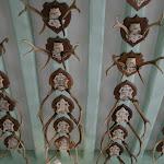 Musée de la Vénerie : trophées