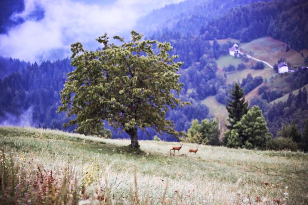 Mysterious Slovenia - Vika-17.jpg