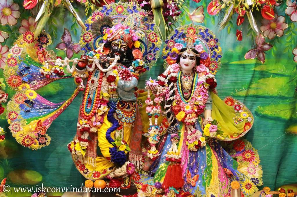 ISKCON Vrindavan Sringar Deity Darshan 26 Feb 2016 (5)