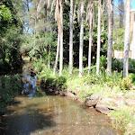 Crossing Green Point Creek (220886)