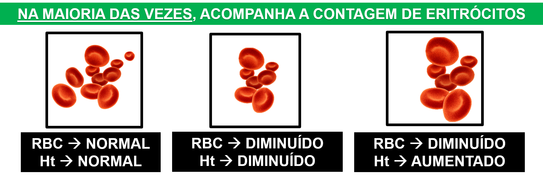 Que es hb. corpuscular media (hcm)