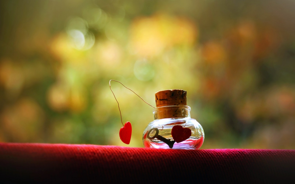 Hinh anh valentine cuc hot 2017