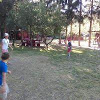 IMAG1168