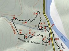Map,  Redwood Nature Trail near Loeb State Park