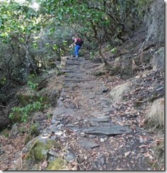 Folleto Valle de los tejos-1_page3_image4