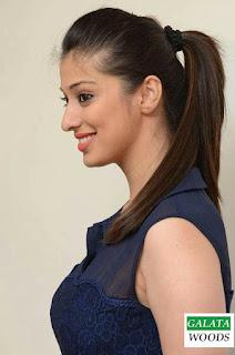 Rai Laxmi Hot Stills Photos Pics Images Pictures Wallpapers