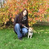 20101017 BGVP Pruefung Oktober - 0004.JPG