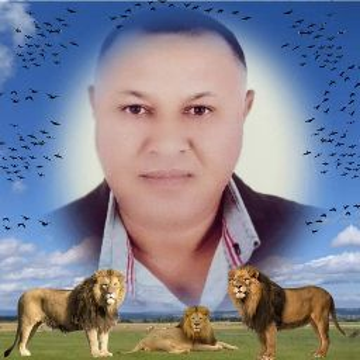 Mostafa Saber Photo 13