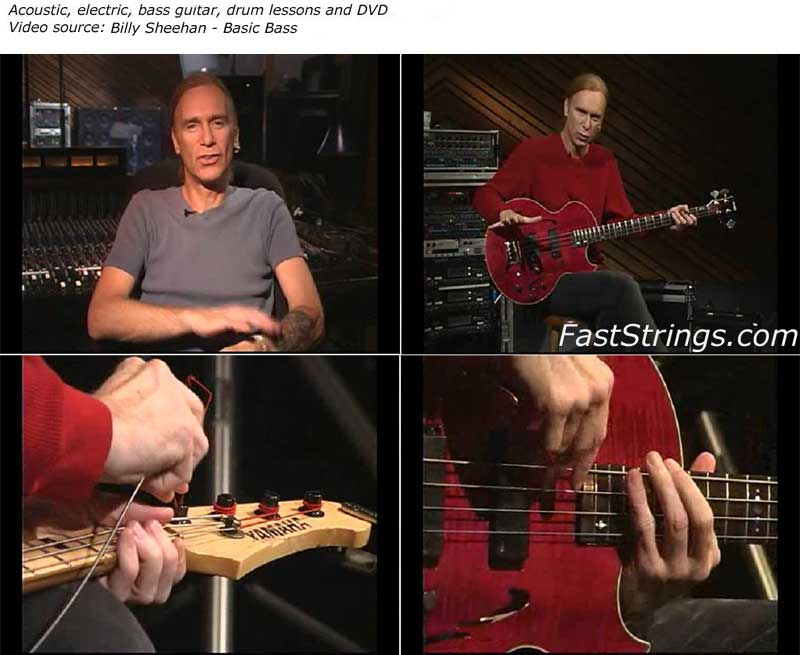 Billy Sheehan - Basic Bass