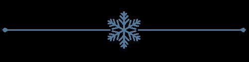 [snowflake-divider-transparent223.png]