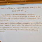 UI - teaduskonverents 2013 080.jpg