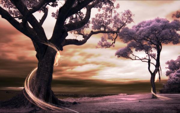 Nightmare Of Silent Landscape, Fantasy Scenes 2