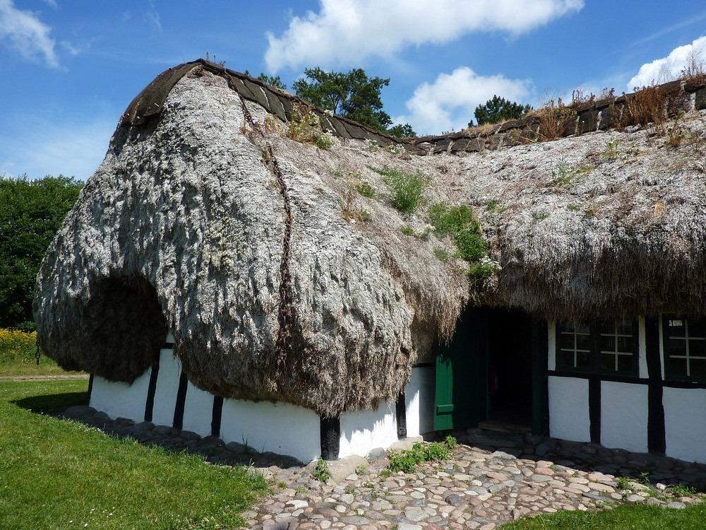 seaweed-roof-laeso-3