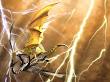 3d Battle Dragon